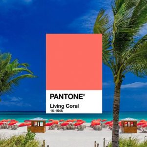 Creation_Pantone_coral